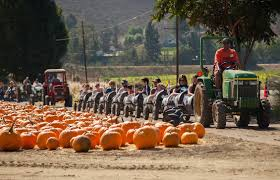 Spirit Halloween San Jose Blvd by Best Halloween Events For Kids In Los Angeles Cbs Los Angeles