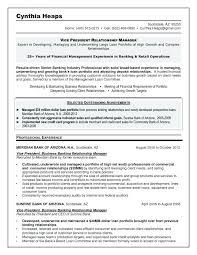 Resume Examples Banking Industry As Well