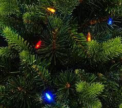 Bethlehem Lights Christmas Trees Qvc by Bethlehem Lights 30