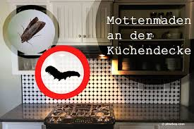 mottenmaden in der küche an der decke wie werde ich sie los