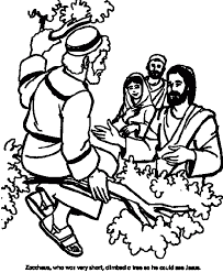 Zacchaeus Tree Coloring Sheet And Community