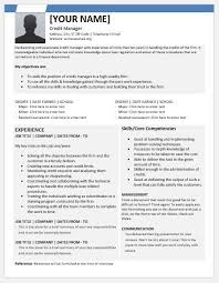 Credit Manager Resume Templates For Ms Word