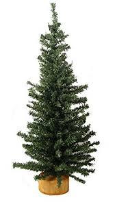 Christmas Tree Amazonca by 12