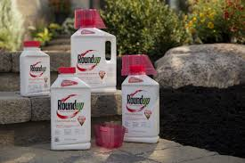 Spectracide Vs Roundup Which Brand Works Better