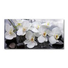 tulup acrylglas wandkunst 100 x50 cm bild auf plexiglas dekorative wand für küche wohnzimmer blumen pflanzen orchidee weiß