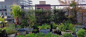 100 Tribeca Roof Sea Green Top