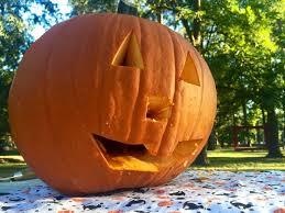 Preserving A Carved Pumpkin by The 25 Best Preserve Carved Pumpkin Ideas On Pinterest