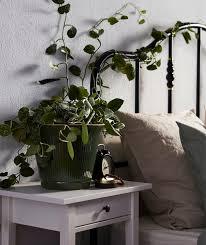 ideen mehr natur in deinem schlafzimmer ikea deutschland