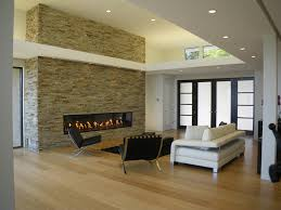 houzz fireplace living room modern with hardwood floors can lights