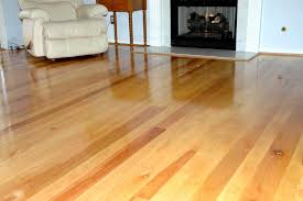 Best Type Of Flooring For Dogs by The Best Birch Hardwood Flooring U2014 Home Ideas Collection Type