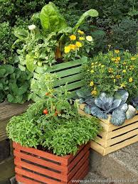 Container Garden Wood Crate Planter Ideas 76
