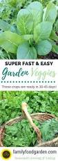 Country Tyme Sheds Hatfield by 94 Best Raised Beds Images On Pinterest Gardening Vegetable