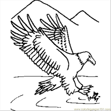 Eagle Coloring Pages Bird Animals 33