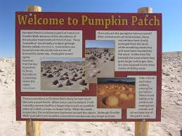 Boulder Creek Pumpkin Patch by Pumpkin Patch Anza Borrego Travel Guide