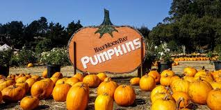 Half Moon Bay Pumpkin Patches 2015 by 49 Miles The San Francisco Guide