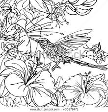 Tropical Flowers Coloring Pages Book Peacock Garden Stock Vector