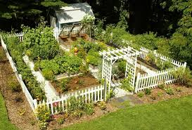 fall ve able garden designs Interesting Home Ve able Garden