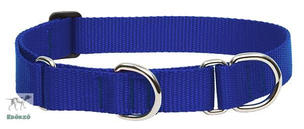"LupinePet Basics Martingale Dog Collar - 1""x15-22"", Blue"