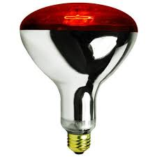 infrared heat l bulb from my pet chicken