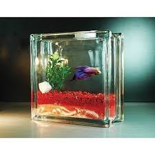 Petition · PetSmart Stop Selling Fish Tanks That Hold Less Than 1