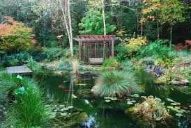 Koi Filters & Koi Pond Systems With Self Cleaning Filters Backyard With Koi Pond And Stones Beautiful As Water Small Kits Garden Pond And Aeration Diy Ponds Waterfall Kit Lawrahetcom Filters Systems With Self Cleaning Gardens Are A Growing Trend Koi Ponds Design On Pinterest Landscape Prefab Fish Some Inspiring Ideas Yo2mocom Home Top Tips For Perfect In Rockville Images About Latest Back Yard Timedlivecom For Sale House Exterior And Interior Diy