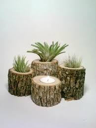 Air Plant Holder Rustic Wedding Centerpiece Log Candle Holders FOUR Oak