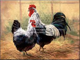 rooster tile murals rooster accent tiles decorative rooster