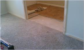Vinyl Tile To Carpet Transition Strips by Tile To Carpet Transition Strip On Concrete Tiles Home