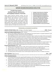 Hr Administrative Assistant Resume Sample Human Resources ... 910 Top Executive Assistant Rumes Dayinblackandwhitecom Best Resume Objectives New Executive Rumes 1112 Samples Of Minibrickscom Administrative Assistant 2019 Guide Examples Sample Digitalprotscom Resume Summary Example Peatix Cv Ctgoodjobs Powered By Career Times Ats Template Luxury Created Pros Myperfectresume Cstruction Administrative Bitwrkco