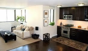 ApartmentSmall Apartment Interior Color Scheme Small