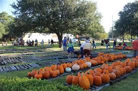 Pumpkin Patch Houston Tx Area by Pumpkin Patch Open October 3 Thru 31 2015 St Philip U0027s United