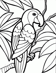 Rainforest Bird Coloring Pages 1