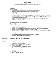 Download New Home Sales Consultant Resume Sample As Image File