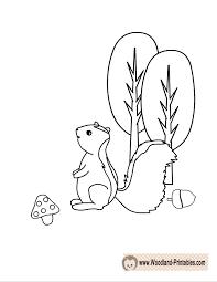 Free Printable Skunk Coloring Page