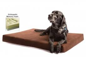 the smokey dog co orthopedic memory foam dog bed review best