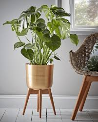 Standing Brass Planter Intended For Plant Pots Indoor Designs 0