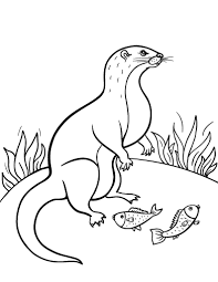 Printable Otter Coloring Page Free PDF Download At Coloringcafe