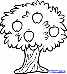 how to draw a fruit tree step 5