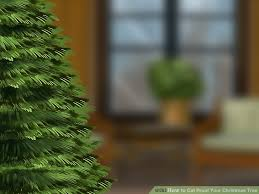 Sugar Or Aspirin For Christmas Tree by 3 Ways To Cat Proof Your Christmas Tree Wikihow