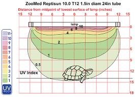 Bearded Dragon Heat Lamp Wattage by Reptile Lighting Information