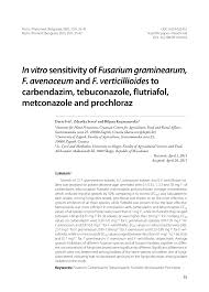 A Quantitative Study Of Trunk Muscle Strength And Fatigability In
