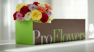 Proflowers Deal Of The Day / Free Calvin Klein Mothers Day 2019 Order Flower Deals And Get Free Shipping Money Ftd Coupons September 2018 Second Hand Car Deals With Free Insurance Send Bouquet Flowers Mixed Bouquets Delivered Ftd Wag Coupon Code Flowers Canada Smile Brilliant November Western Digital C4d Toys R Us 20 Off October Grace Eleyae Amazon March Cheryls Cookies Proflowers Deal Of The Day Calvin Klein Safeway Shoprite Online Shopping Avas Coupon Code 6 Last Minute Delivery Sites For With Promo Codes