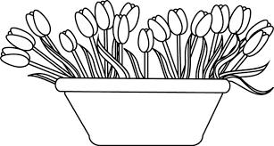 coloriage des tulipes dans un pot dory fr coloriages