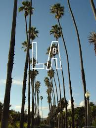 Tags La Los Angeles Cali Swag California Palm Trees Summer Sunny Beautiful West Coast