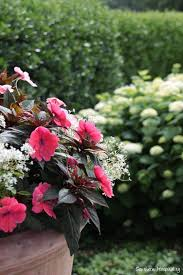 The Left Side Of Porch With More Bursting Hydrangea Blooms