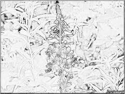 Saison Hiver 109 Nature Coloriages À Imprimer Pour Coloriage