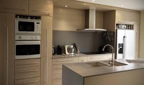 cuisine grise plan de travail bois cuisine bois blanchi cuisine blanche murs aubergine cuisine bois