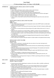 Download Special Education Teacher Resume Sample As Image File