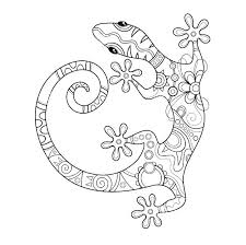 Gecko Coloring Page Leopard Pages Sheets Image Result