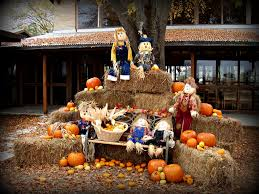 Pumpkin Patch Arlington Tx 2015 by 12 Signs Fall Is Here In Texas